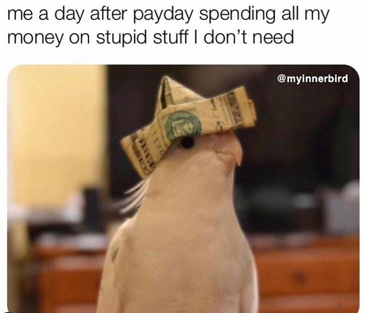 Cash - me a day after payday spending all my money on stupid stuff I don't need @myinnerbird EXTR