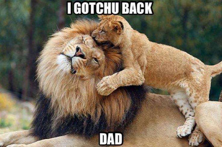 Mammal - I GOTCHU BACK DAD