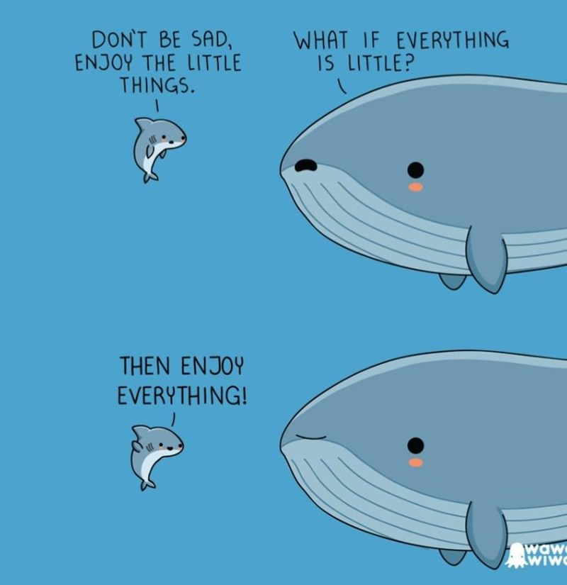 Fish - DON'T BE SAD, ENJOY THE LITTLE THINGS. WHAT IF EVERYTHING IS LITTLE? THEN ENJOY EVERYTHING! waw wiw