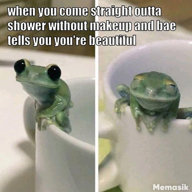 Frog - when you come straight outta shower without makeup and bae tells you you're beautiful Memasik