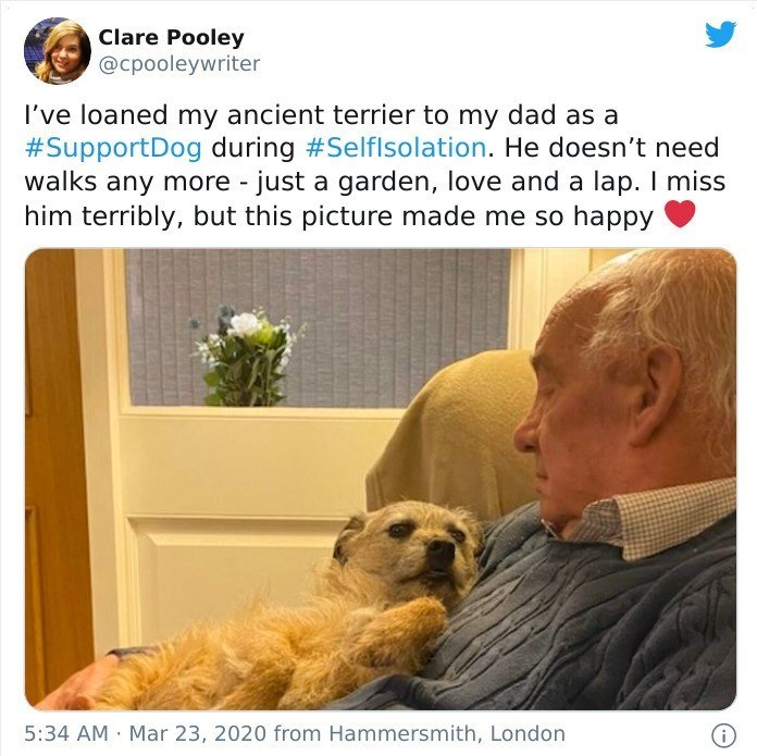 Adaptation - Clare Pooley @cpooleywriter I've loaned my ancient terrier to my dad as a #SupportDog during #Selflsolation. He doesn't need walks any more - just a garden, love and a lap. I miss him terribly, but this picture made me so happy 5:34 AM Mar 23, 2020 from Hammersmith, London O