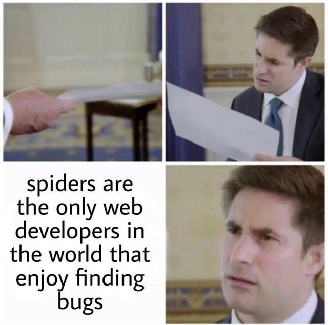 Face - spiders are the only web developers in the world that enjoy finding bugs