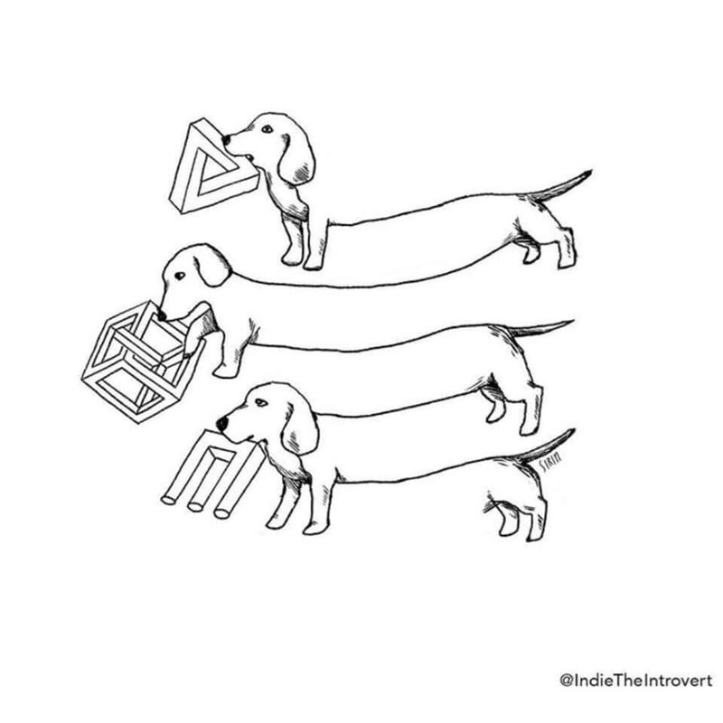 illustration of optical illusions applied to a dachshund wiener dog