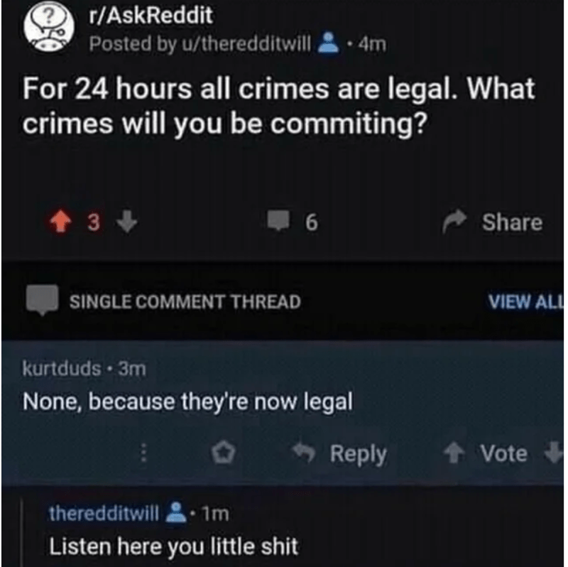 Text - r/AskReddit Posted by u/theredditwill, • 4m For 24 hours all crimes are legal. What crimes will you be commiting? 6 A Share SINGLE COMMENT THREAD VIEW ALL kurtduds · 3m None, because they're now legal + Reply + Vote theredditwill • 1m Listen here you little shit