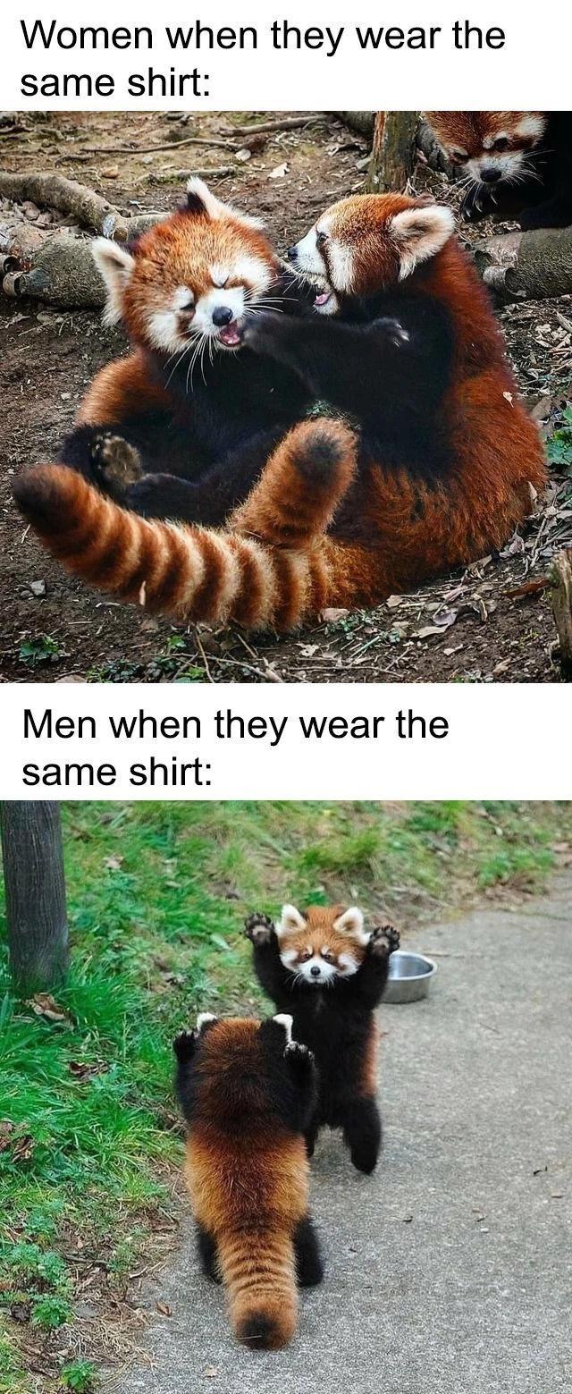 Red panda - Women when they wear the same shirt: Men when they wear the same shirt: