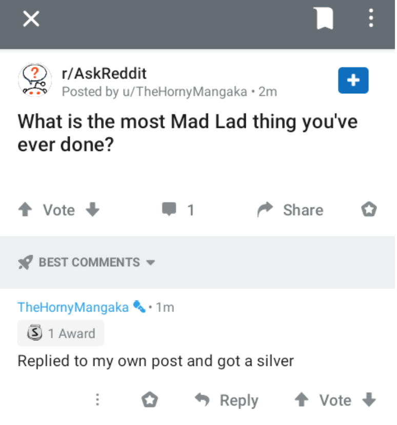 Text - r/AskReddit Posted by u/TheHornyMangaka · 2m What is the most Mad Lad thing you've ever done? Vote 1 Share BEST COMMENTS - TheHornyMangaka • 1m 3 1 Award Replied to my own post and got a silver Reply 1 Vote