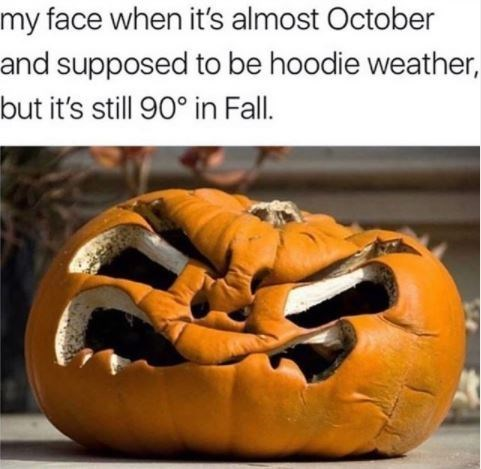 Winter squash - my face when it's almost October and supposed to be hoodie weather, but it's still 90° in Fall.