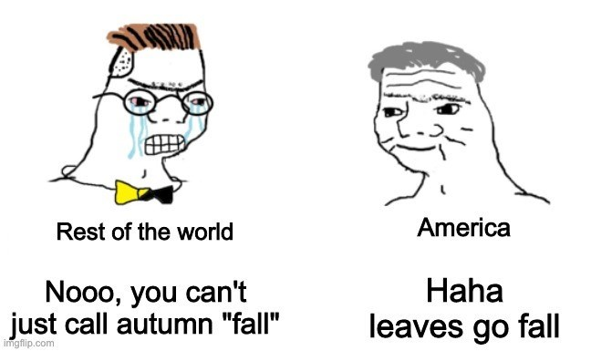 """Face - Rest of the world America Haha Nooo, you can't just call autumn """"fall"""" leaves go fall imgflip.com"""