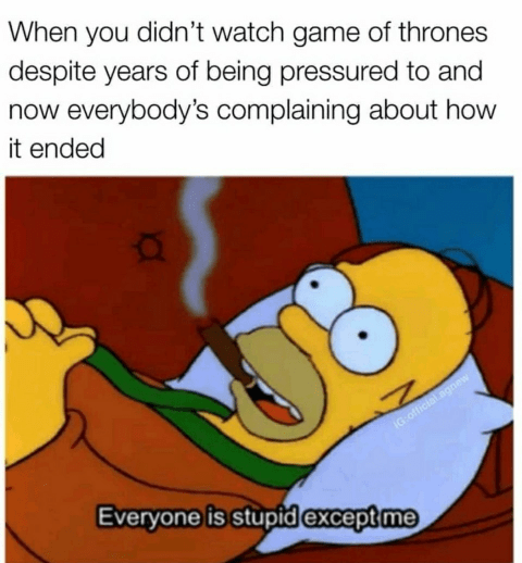 Cartoon - When you didn't watch game of thrones despite years of being pressured to and now everybody's complaining about how it ended IG:official.agnw Everyone is stupid except me