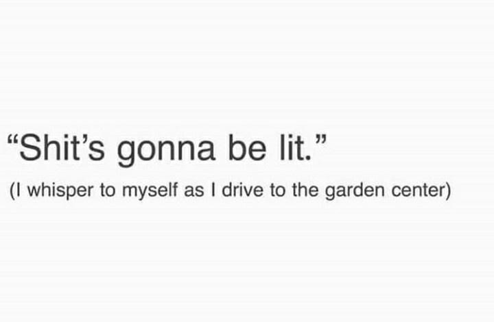 """Text - """"Shit's gonna be lit."""" (I whisper to myself as I drive to the garden center)"""