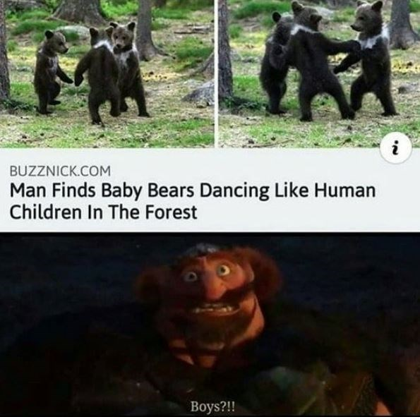 Primate - i BUZZNICK.COM Man Finds Baby Bears Dancing Like Human Children In The Forest Boys?!!