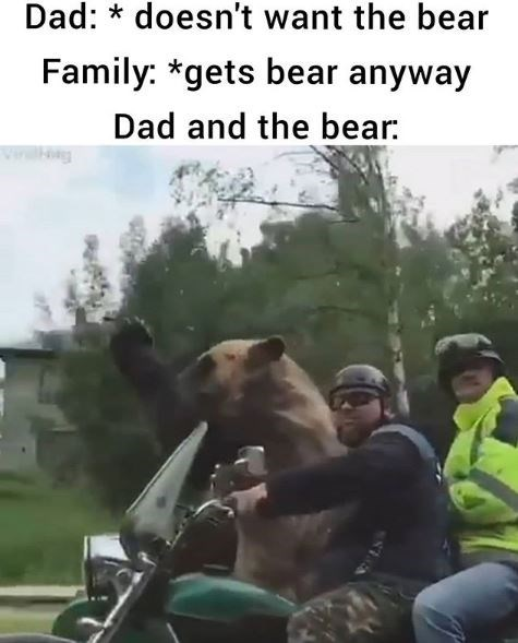 Mode of transport - Dad: * doesn't want the bear Family: *gets bear anyway Dad and the bear: wwg