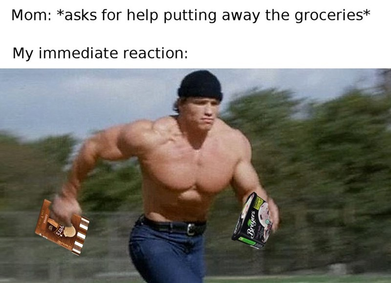 Meme or running arnold schwarzenegger with ice cream as to what everyone does and did when mom asked for help with the groceries