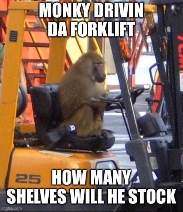Photo caption - MONKY DRIVIN DA FORKLİFT 25 HOW MANY SHELVES WILL HE STOCK imgflip.com
