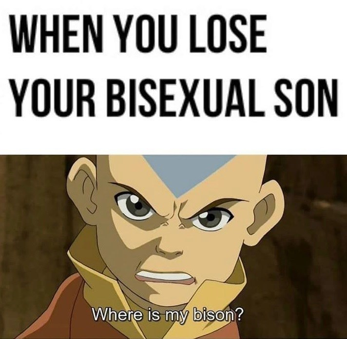 Cartoon - WHEN YOU LOSE YOUR BISEXUAL SON Where is my bison?