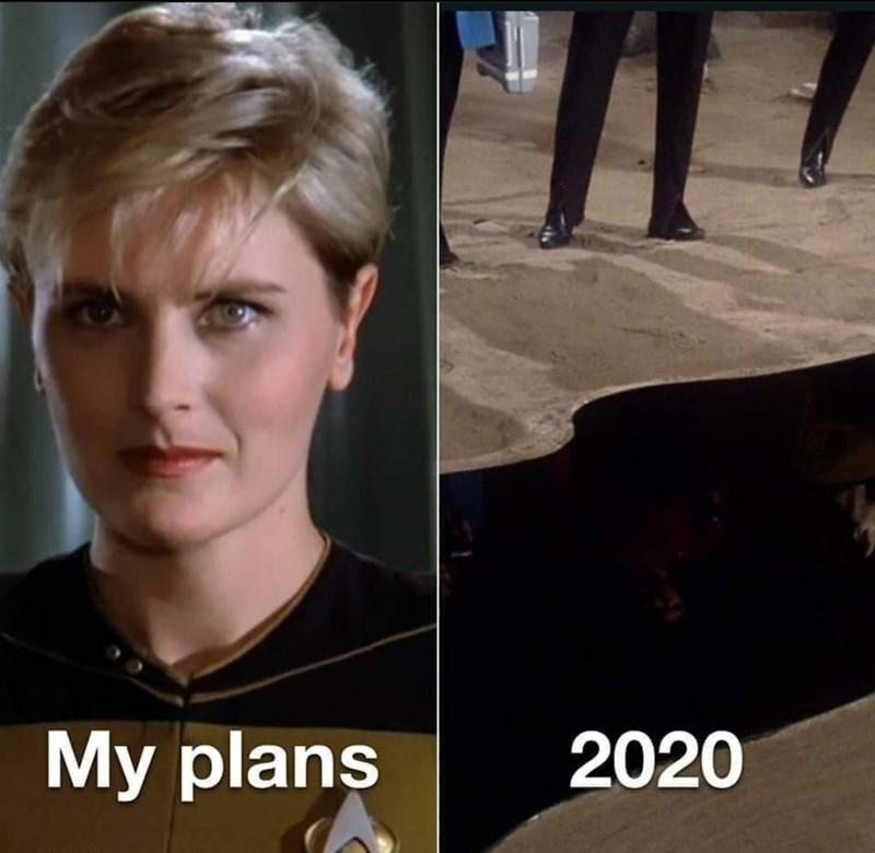Face - My plans 2020