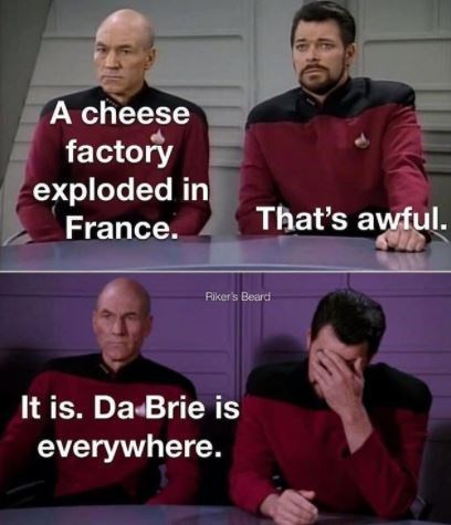 Facial expression - A cheese factory exploded in France. That's awful. Riker's Beard It is. Da Brie is everywhere.