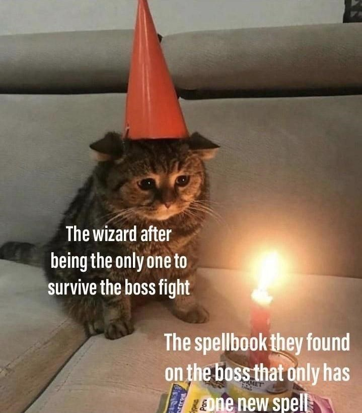 Cat - The wizard after being the only one to survive the boss fight The spellbook they found on the boss that only has Eone new spell