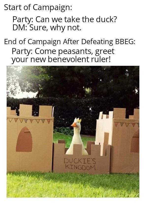 Text - Start of Campaign: Party: Can we take the duck? DM: Sure, why not. End of Campaign After Defeating BBEG: Party: Come peasants, greet your new benevolent ruler! DUCKIE'S KINGDOM