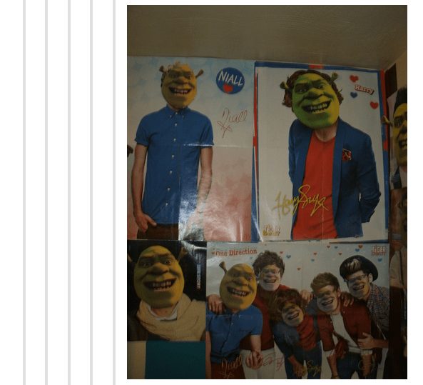 Art - NIALL Drall TIGER One Direction