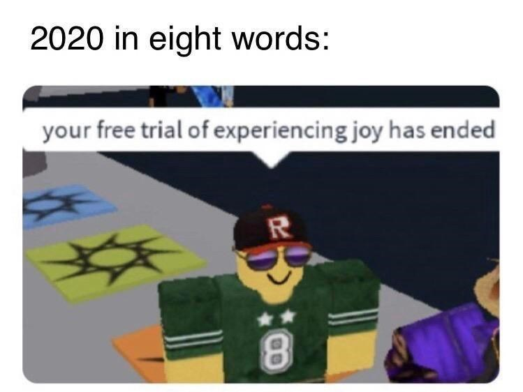 Text - 2020 in eight words: your free trial of experiencing joy has ended R