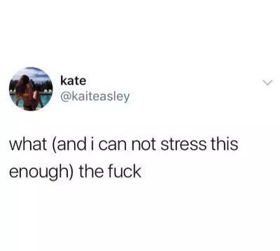 Text - kate @kaiteasley what (and i can not stress this enough) the fuck