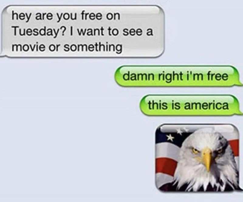 Bald eagle - hey are you free on Tuesday? I want to see a movie or something damn right i'm free this is america