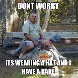 Photo caption - DONT WORRY ITS WEARING A HAT AND I HAVE A RAKE