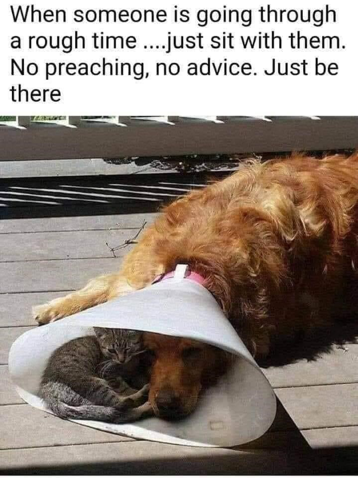 Dog - When someone is going through a rough time.just sit with them. No preaching, no advice. Just be there