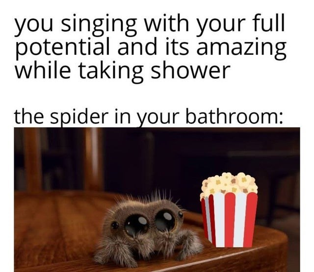 Text - you singing with your full potential and its amazing while taking shower the spider in your bathroom: 11