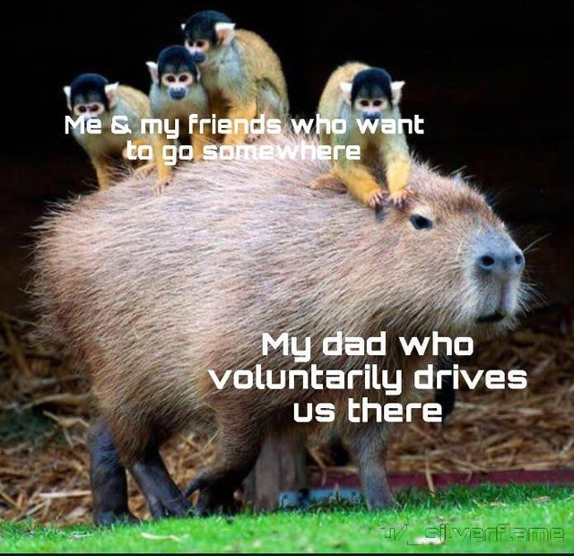 Mammal - Me & my friends who want to go somewhere My dad who voluntarily drives us there Gilverflame
