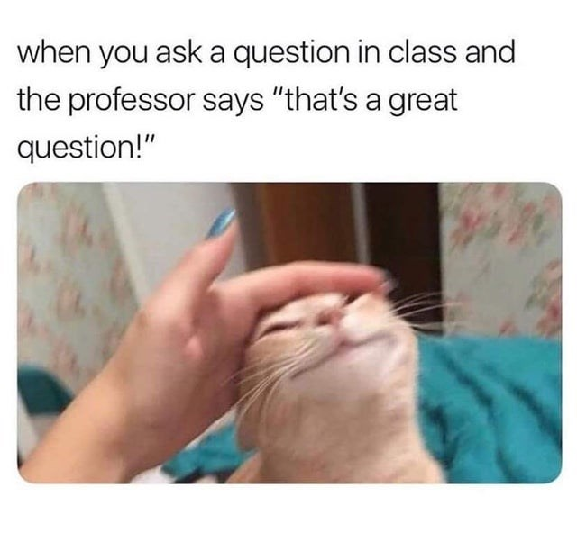 """Skin - when you ask a question in class and the professor says """"that's a great question!"""""""
