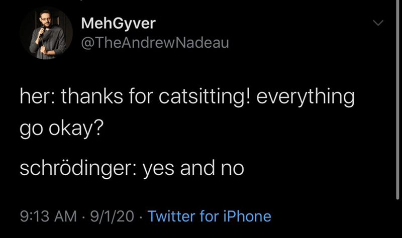 Text - MehGyver @TheAndrewNadeau her: thanks for catsitting! everything go okay? schrödinger: yes and no 9:13 AM · 9/1/20 · Twitter for iPhone