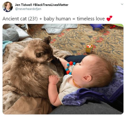 Human - Jen Tidwell #BlackTransLivesMatter @neverheardofjen Ancient cat (23!) + baby human = timeless love