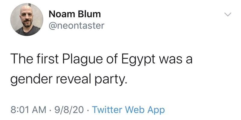 Text - Noam Blum @neontaster The first Plague of Egypt was a gender reveal party. 8:01 AM · 9/8/20 · Twitter Web App >