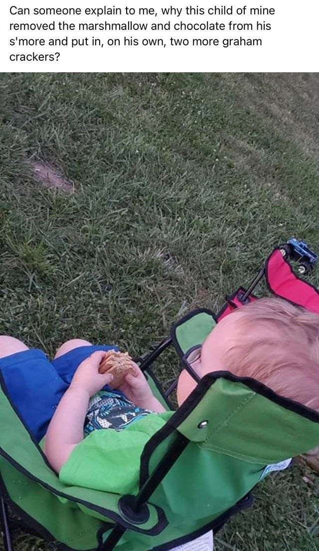 Product - Can someone explain to me, why this child of mine removed the marshmallow and chocolate from his s'more and put in, on his own, two more graham crackers?