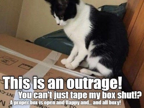 Cat - V Aproper box i open and flappy and. and all boxy! ENT-CO This is an outrage! IN You can't just tape my box shut!?
