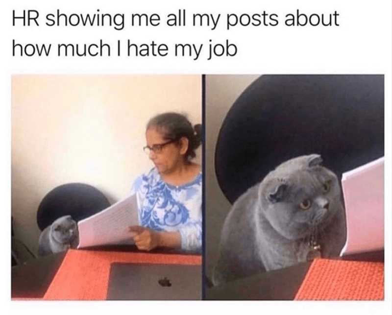 Funny meme about work, relatable meme, HR, human resources | HR showing me all my posts about how much I hate my job