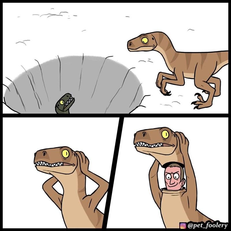 Cartoon - @pet_foolery