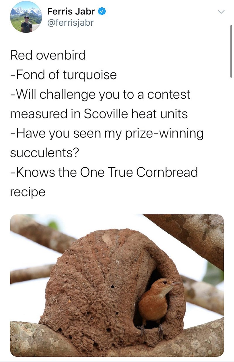 Soil - Ferris Jabr @ferrisjabr Red ovenbird -Fond of turquoise -Will challenge you to a contest measured in Scoville heat units -Have you seen my prize-winning succulents? -Knows the One True Cornbread recipe