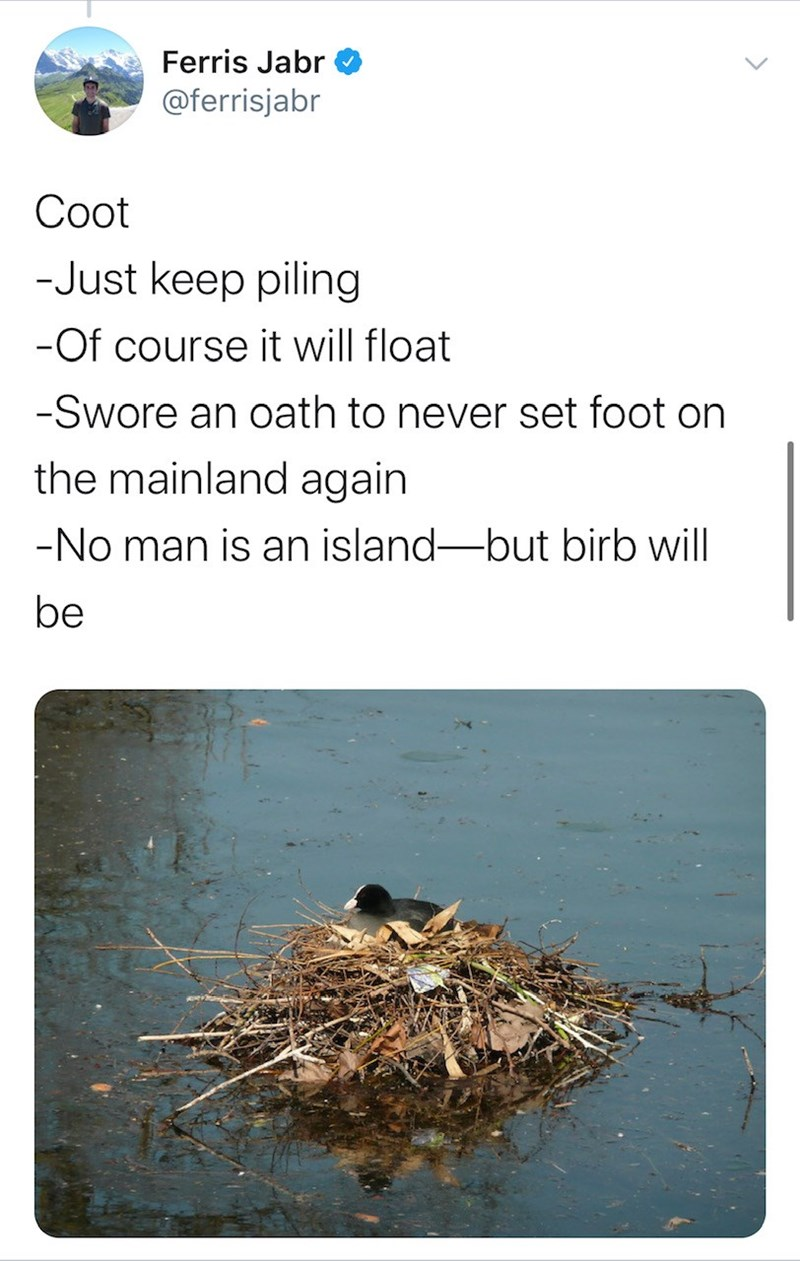 Adaptation - Ferris Jabr @ferrisjabr Сot -Just keep piling -Of course it will float -Swore an oath to never set foot on the mainland again -No man is an island-but birb will be