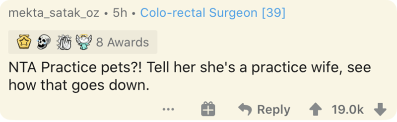 Text - mekta_satak_oz • 5h • Colo-rectal Surgeon [39] 8 Awards NTA Practice pets?! Tell her she's a practice wife, see how that goes down. Reply 19.0k ...