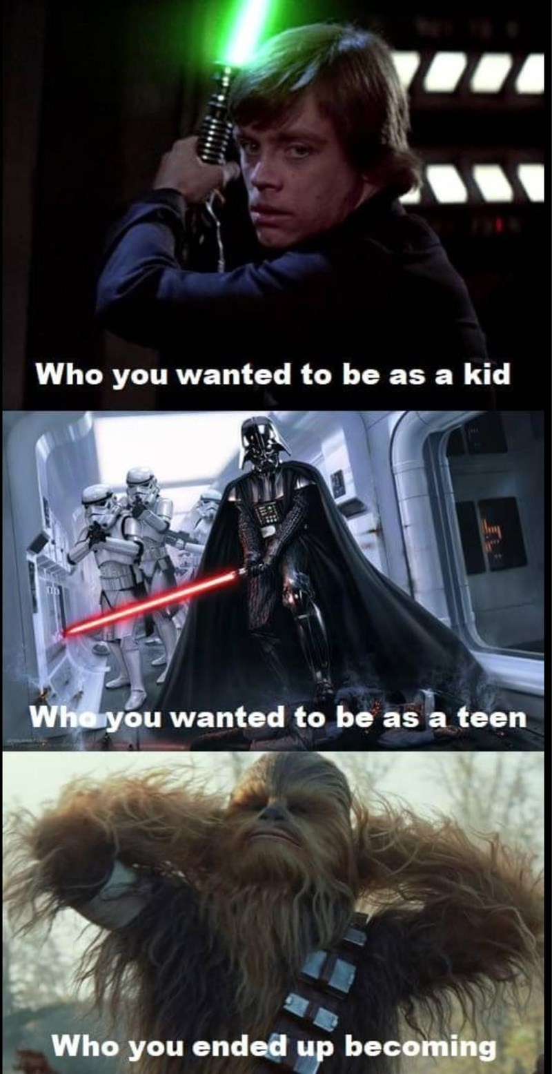 Chewbacca - Who you wanted to be as a kid Who you wanted to be as a teen Who you ended up becoming