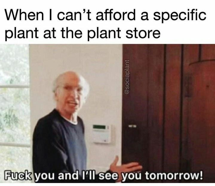 Text - When I can't afford a specific plant at the plant store Fuck you and l'll see you tomorrow! @sociaplant