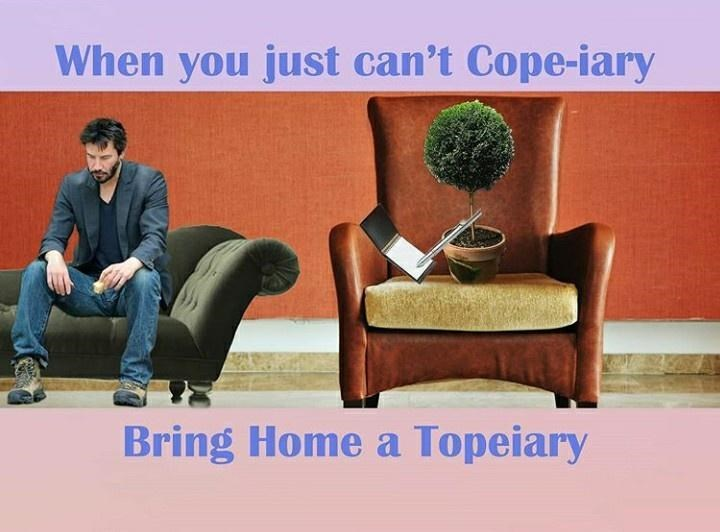 Furniture - When you just can't Cope-iary Bring Home a Topeiary