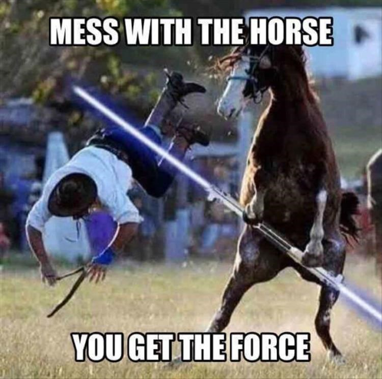Horse - MESS WITH THE HORSE YOU GET THE FORCE