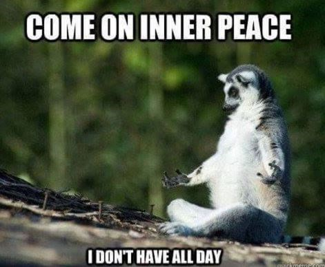 Vertebrate - COME ON INNER PEACE I DON'T HAVE ALL DAY rhmemecom
