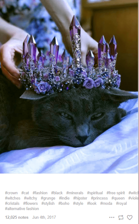 Purple - #crown #cat #fashion #black #minerals #spiritual #free spirit #witch #witches #witchy #grunge #indie #hipster #princess #queen #viole #cristals #flowers #stylish #boho #style #look #moda #royal #alternative fashion 12,025 notes Jun 4th, 2017 ...