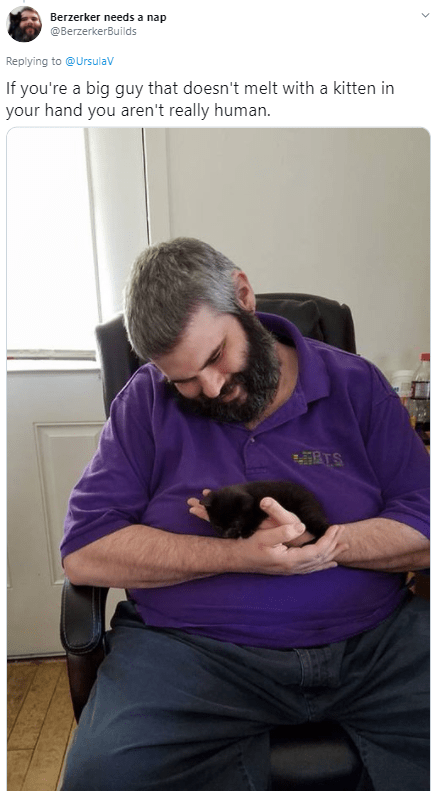 Companion dog - Berzerker needs a nap @BerzerkerBuilds Replying to @Ursulav If you're a big guy that doesn't melt with a kitten in your hand you aren't really human. RTS >