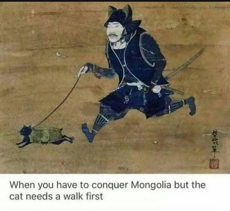 best funny memes - Photo caption - When you have to conquer Mongolia but the cat needs a walk first 中年,國